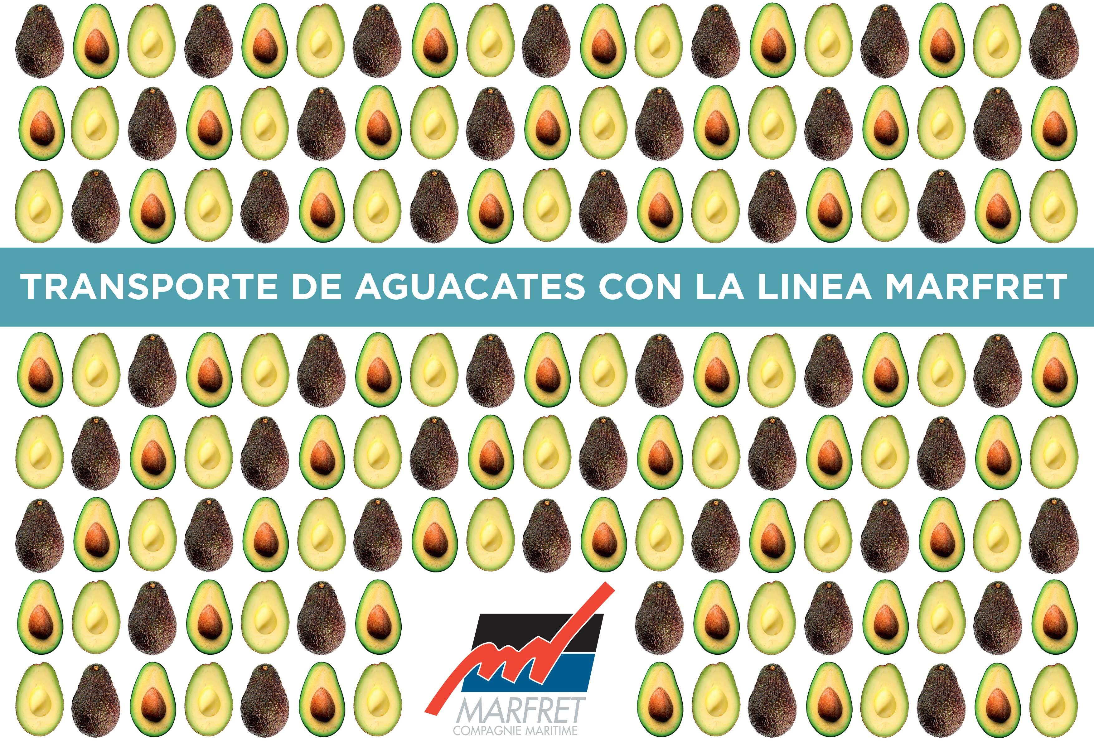 Arrivée à maturité, la ligne MedCar séduit les exportateurs de fruits sud-américains